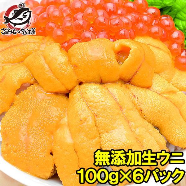 生ウニ 生うに 冷凍 無添加 天然 600g 100g×6パック(ウニ うに 雲丹)|tsukiji-ousama