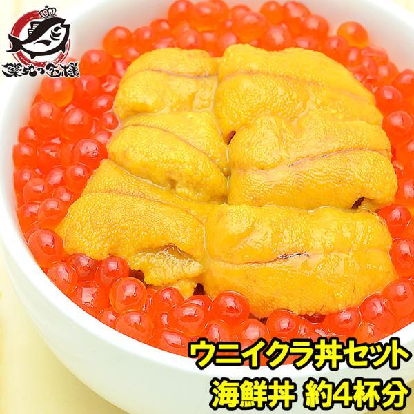 築地市場のウニイクラ丼セット(4杯分・無添加生ウニ200g&いくら醤油漬け200g)海鮮丼で約4杯分