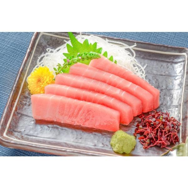 (訳あり わけあり ワケあり)ミナミマグロ 中トロ 200g(南まぐろ 南マグロ 南鮪 インドまぐろ 刺身) tsukiji-ousama 07
