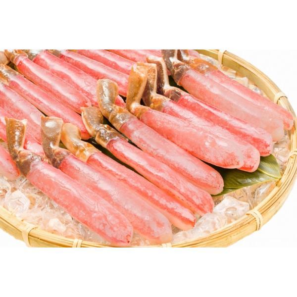 かにしゃぶ ズワイガニ ポーション ずわいがに 生ズワイガニ 刺身 むき身 3L 500g BBQ バーベキュー かに カニ 蟹 刺身 カニ鍋 焼きガニ|tsukiji-ousama|15