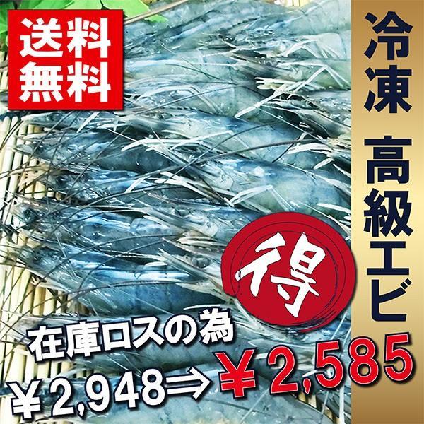 訳あり エビ 生食 高級 刺身 生食 海老 冷凍 ブルネイ産ロイヤルブルーシュリンプ 800g 51/60 約42尾(ギフト お歳暮可)
