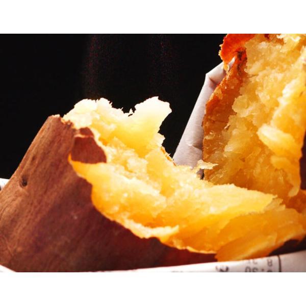いも 芋 イモ 焼き芋 野菜 【加賀野菜認定】 『五郎島金時芋』 石川産 約2kg(3〜8本入)|tsukijiichiba|03
