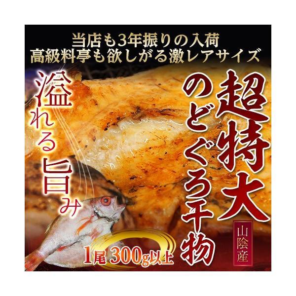 山陰産 『のどぐろ』 300g以上 超特大サイズ ※冷凍|tsukijiichiba