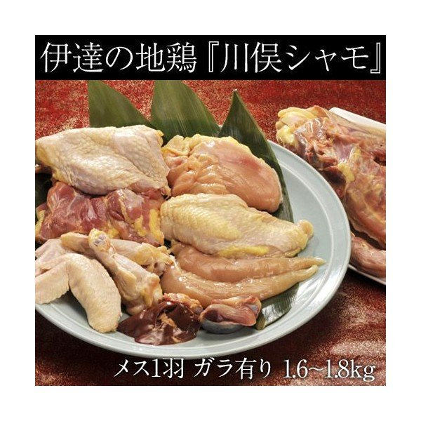 伊達の地鶏『川俣シャモ』 メス1羽 (内臓付き・ガラ付き) 1.6キロ以上 福島県/ギフト/冷蔵 ☆|tsukijiichiba