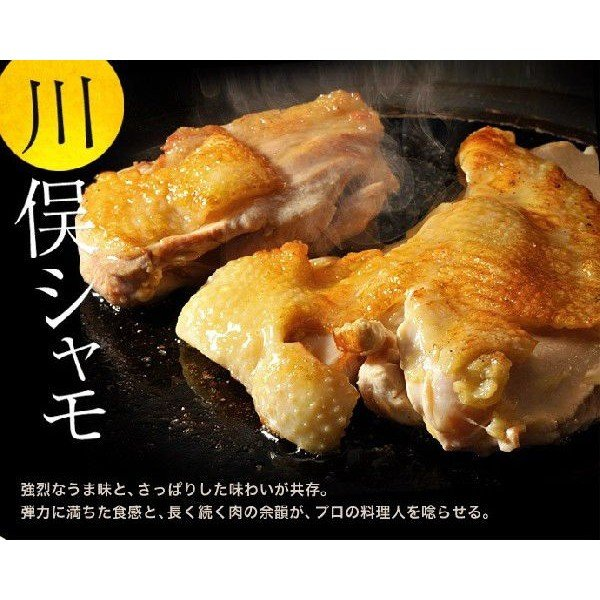 伊達の地鶏『川俣シャモくんせいハーフ』(半羽 約600g) 福島県/ギフト/冷蔵 ☆|tsukijiichiba|02