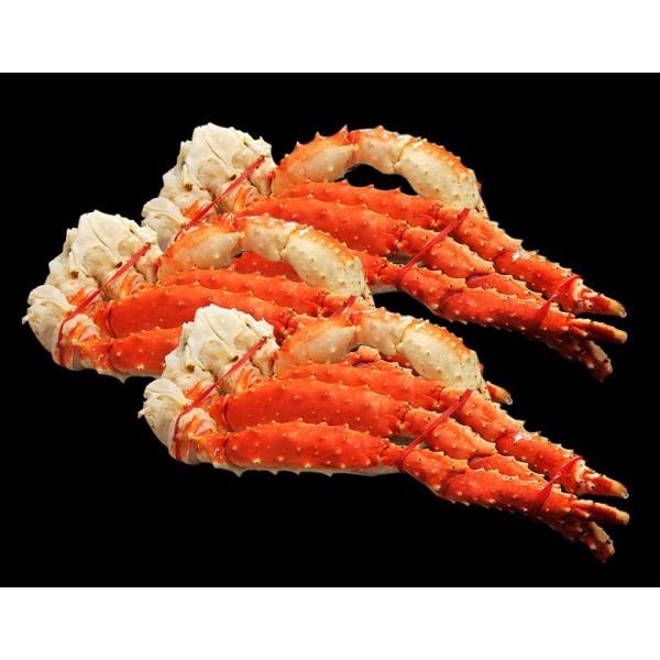 かに カニ 蟹 タラバガニ タラバ蟹 たらば蟹 たらばがに 約800g×3肩 合計2.4kg 6人前相当 豊洲市場 ボイル 特大タラバガニ 冷凍 送料無料|tsukijiichiba
