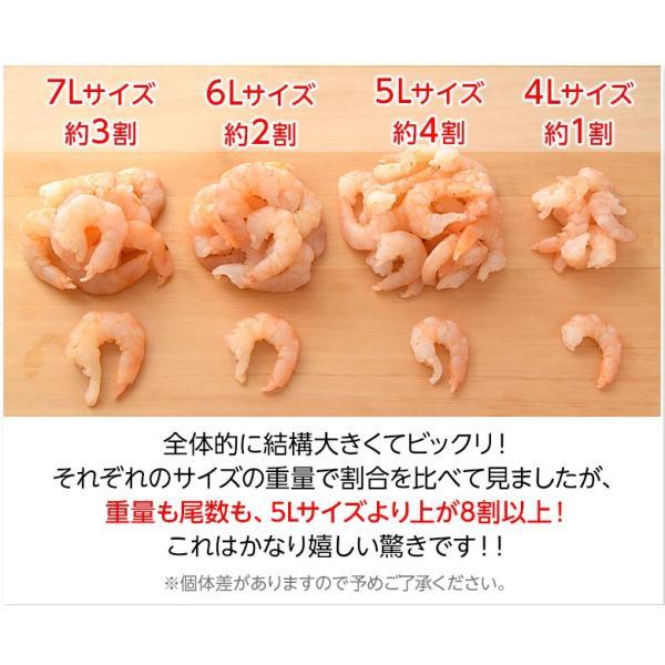 特大ムキエビ 1kg(解凍後約800g) 無選別 ※冷凍 sea ☆|tsukijiichiba|06