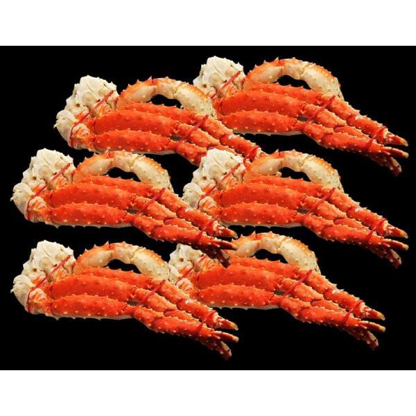 カニ タラバガニ カニしゃぶ 脚 「特大ボイルタラバ蟹」ロシア産 6肩約4.8kg(12人前相当) 冷凍≪送料無料≫ sea ☆|tsukijiichiba