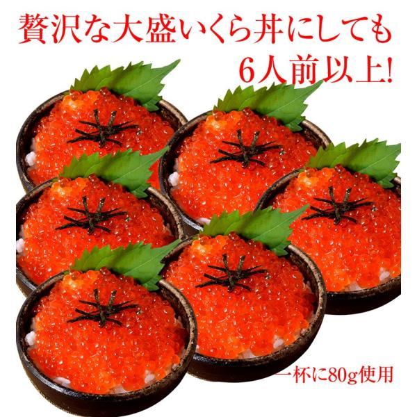 イクラ いくら 魚卵 北海道釧路加工 天然鮭いくら醤油漬 250g×2P 合計500g 送料無料|tsukijiichiba|02