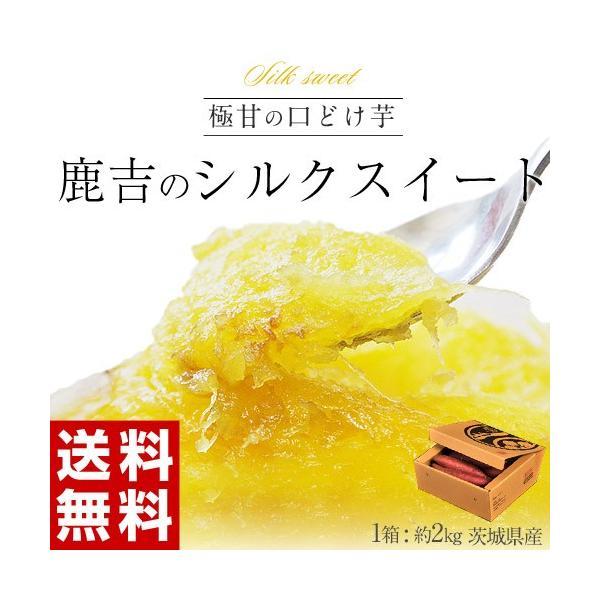 さつまいも 茨城県産 鹿吉のシルクスイート 1箱 約2kg 送料無料|tsukijiichiba