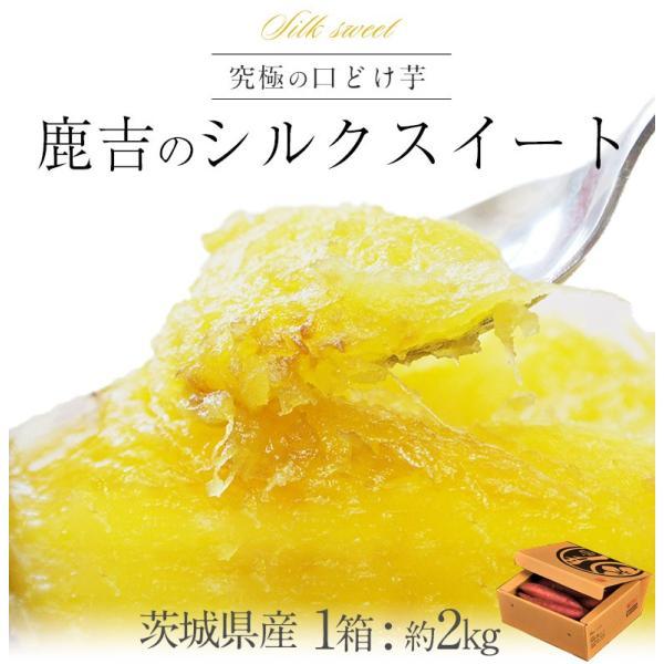 さつまいも 茨城県産 鹿吉のシルクスイート 1箱 約2kg 送料無料|tsukijiichiba|02