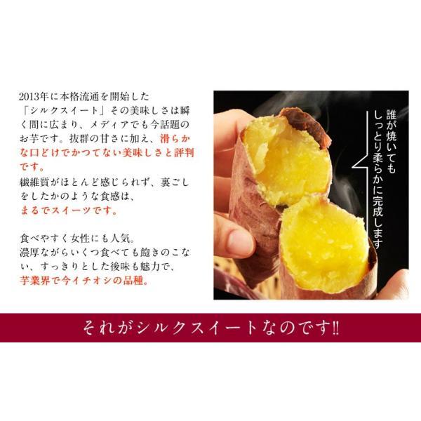 さつまいも 茨城県産 鹿吉のシルクスイート 1箱 約2kg 送料無料|tsukijiichiba|04