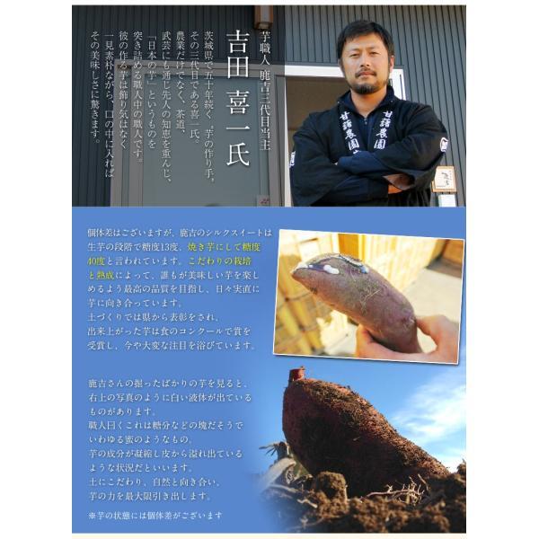 さつまいも 茨城県産 鹿吉のシルクスイート 1箱 約2kg 送料無料|tsukijiichiba|08