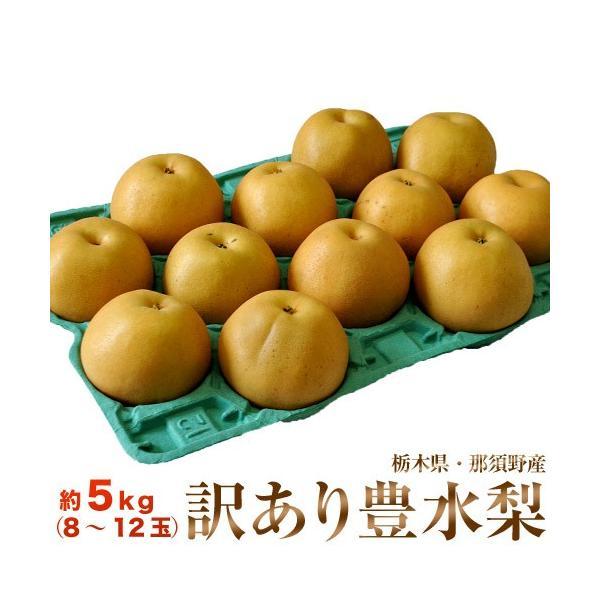 梨 栃木県那須野産  大玉「豊水梨」 無選別 (8〜12玉) 約5kg  送料無料|tsukijiichiba