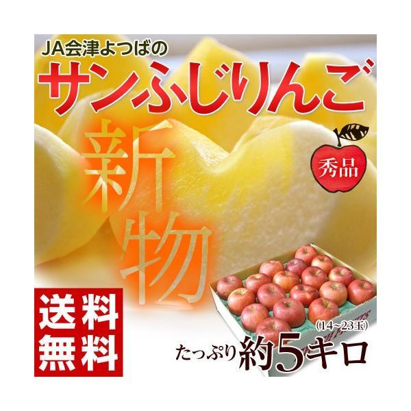 サンふじ 送料無料 リンゴ りんご 福島 JA会津よつば サンふじりんご 約5kg(14〜23玉)秀品 常温|tsukijiichiba