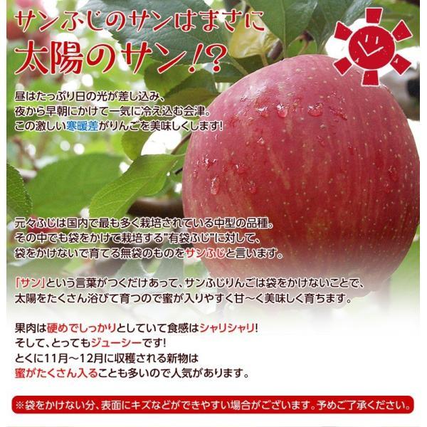 サンふじ 送料無料 リンゴ りんご 福島 JA会津よつば サンふじりんご 約5kg(14〜23玉)秀品 常温|tsukijiichiba|02