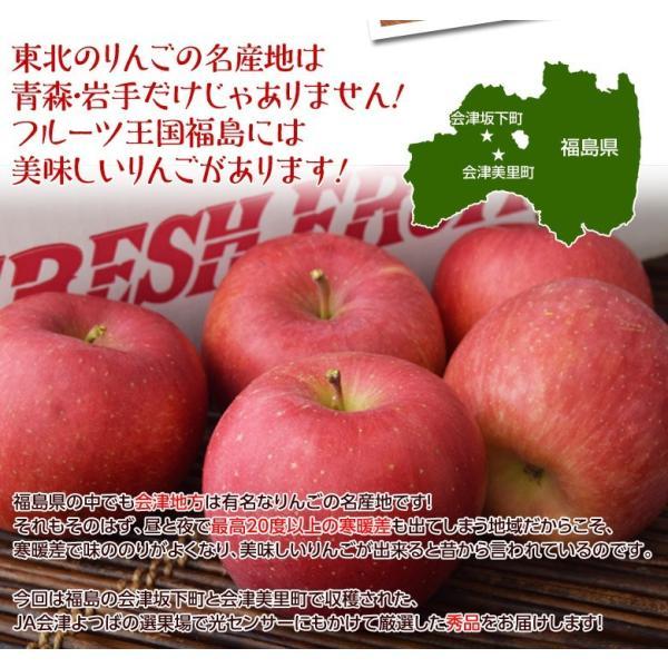 サンふじ 送料無料 リンゴ りんご 福島 JA会津よつば サンふじりんご 約5kg(14〜23玉)秀品 常温|tsukijiichiba|04