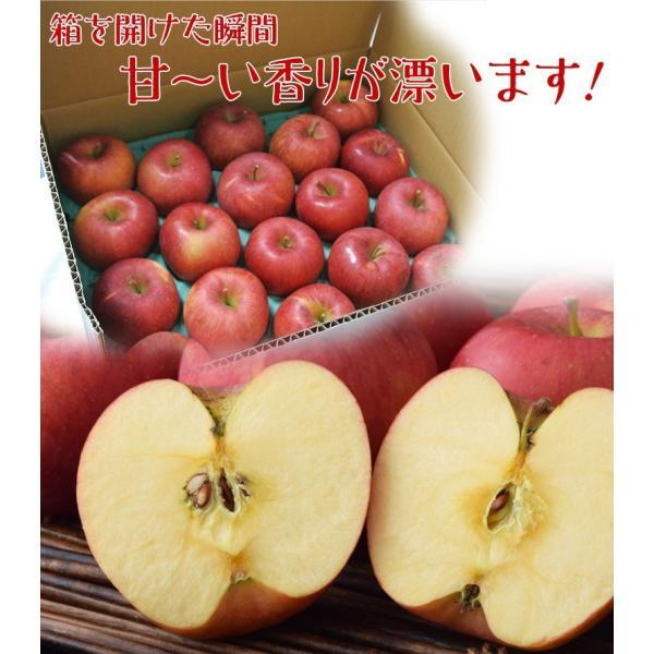 サンふじ 送料無料 リンゴ りんご 福島 JA会津よつば サンふじりんご 約5kg(14〜23玉)秀品 常温|tsukijiichiba|05