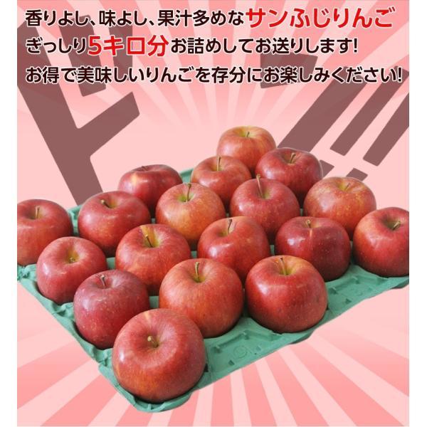 サンふじ 送料無料 リンゴ りんご 福島 JA会津よつば サンふじりんご 約5kg(14〜23玉)秀品 常温|tsukijiichiba|06
