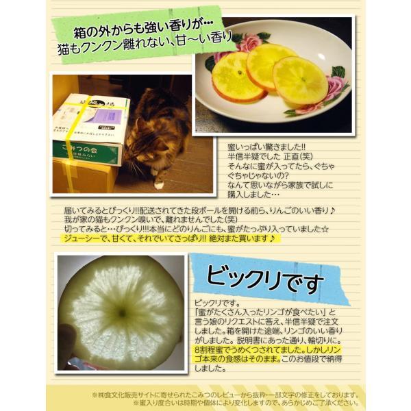 林檎 リンゴ 青森県産 ちょっと訳あり こみつりんご 6〜12玉 約2kg 秀A品 ムラ・小さな傷あり 常温 4箱まで同一配送先に送料1口で配送可能 tsukijiichiba 11