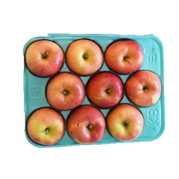 林檎 リンゴ 青森県産 ちょっと訳あり こみつりんご 6〜12玉 約2kg 秀A品 ムラ・小さな傷あり 常温 4箱まで同一配送先に送料1口で配送可能 tsukijiichiba 13