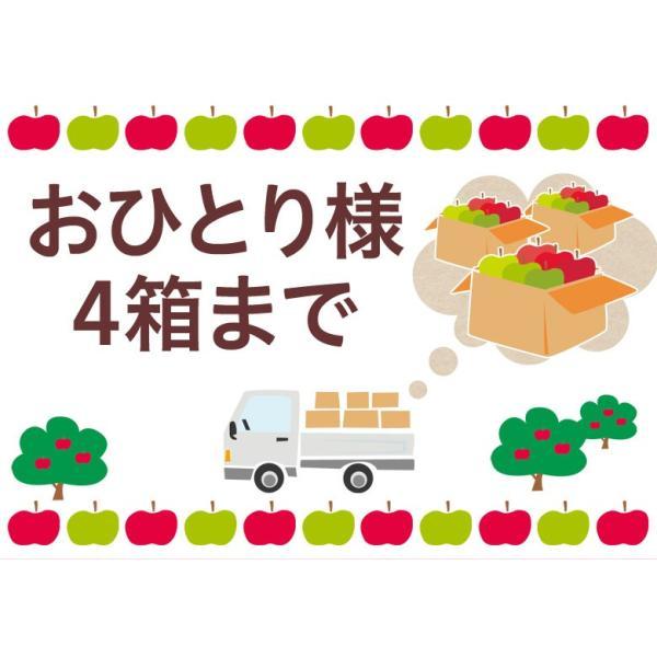 林檎 リンゴ 青森県産 ちょっと訳あり こみつりんご 6〜12玉 約2kg 秀A品 ムラ・小さな傷あり 常温 4箱まで同一配送先に送料1口で配送可能 tsukijiichiba 03