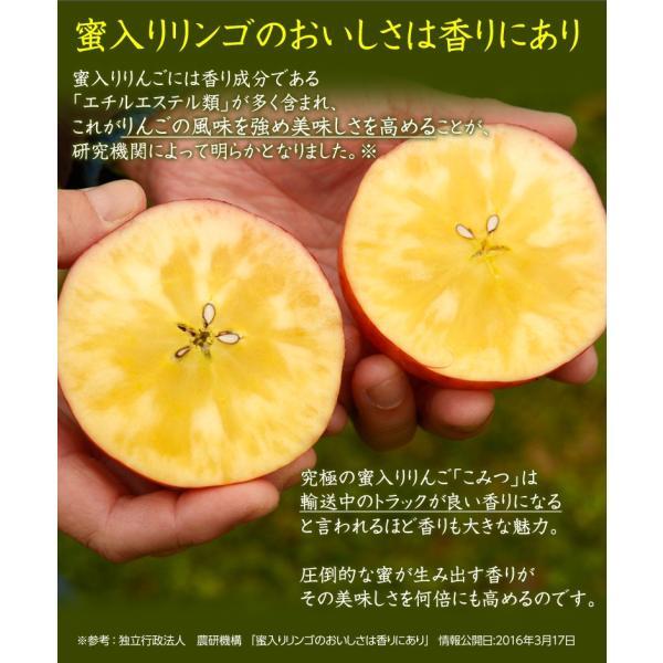 林檎 リンゴ 青森県産 ちょっと訳あり こみつりんご 6〜12玉 約2kg 秀A品 ムラ・小さな傷あり 常温 4箱まで同一配送先に送料1口で配送可能 tsukijiichiba 07