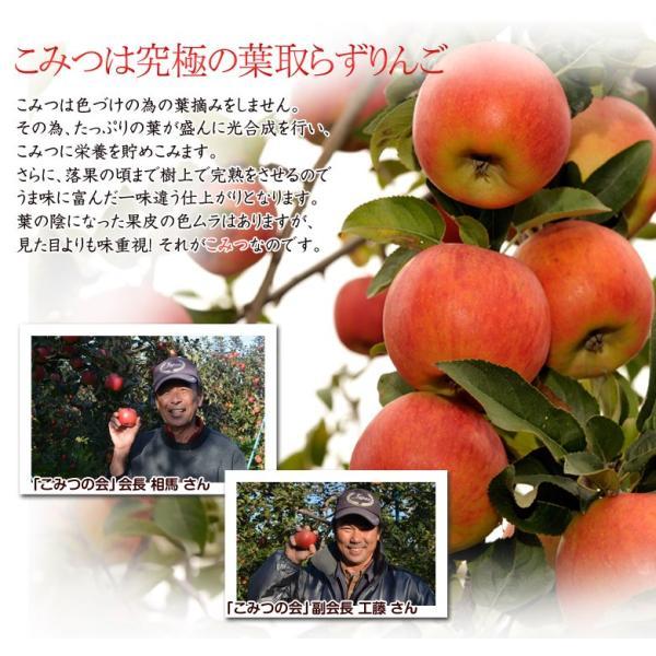 林檎 リンゴ 青森県産 ちょっと訳あり こみつりんご 6〜12玉 約2kg 秀A品 ムラ・小さな傷あり 常温 4箱まで同一配送先に送料1口で配送可能 tsukijiichiba 08