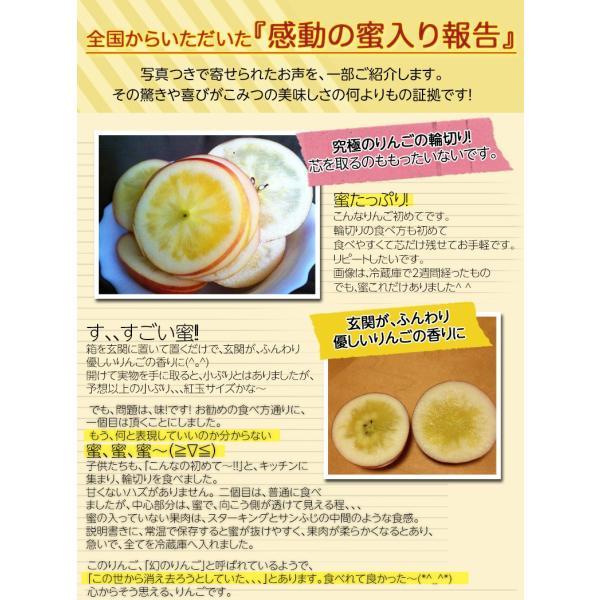 林檎 リンゴ 青森県産 ちょっと訳あり こみつりんご 6〜12玉 約2kg 秀A品 ムラ・小さな傷あり 常温 4箱まで同一配送先に送料1口で配送可能 tsukijiichiba 10