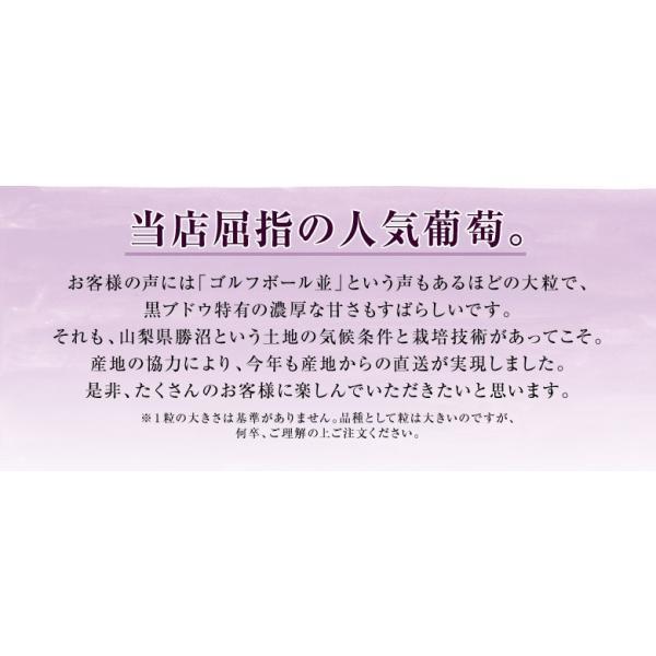 ぶどう 山梨県 勝沼産「藤稔」4Lサイズ(約650g)×2房 送料無料  葡萄※冷蔵 frt ☆|tsukijiichiba|03