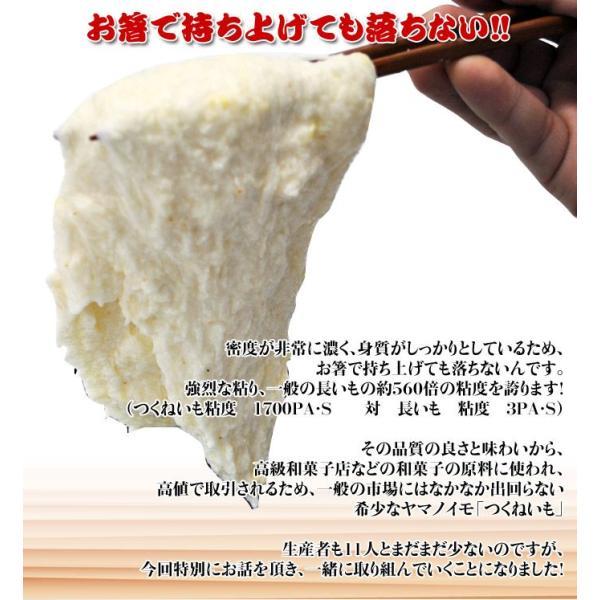 北海道・十勝高島産 『つくねいも』 (ヤマノイモ)  約3kg M〜Sサイズ(7〜18玉) ☆|tsukijiichiba|04