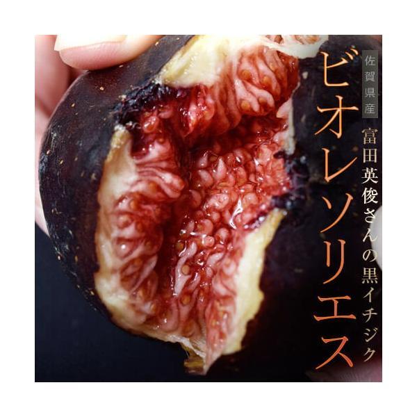 佐賀県産 富田秀俊さんの黒イチジク「ビオレソリエス」 約300g(3〜8玉)×2P ※冷蔵・産地直送|tsukijiichiba