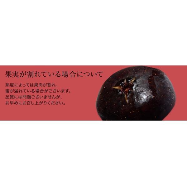 佐賀県産 富田秀俊さんの黒イチジク「ビオレソリエス」 約300g(3〜8玉)×2P ※冷蔵・産地直送|tsukijiichiba|05