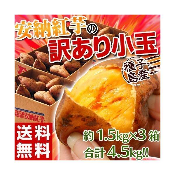 《送料無料》種子島産 「安納紅芋」 訳あり小玉 約1.5kg×3箱 合計4.5kg 安納芋 〇|tsukijiichiba