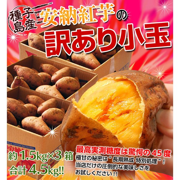 《送料無料》種子島産 「安納紅芋」 訳あり小玉 約1.5kg×3箱 合計4.5kg 安納芋 〇|tsukijiichiba|02
