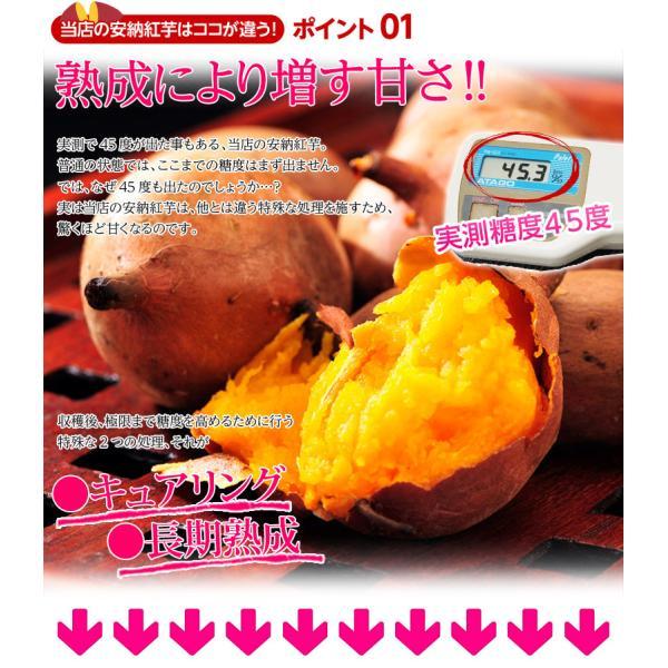 《送料無料》種子島産 「安納紅芋」 訳あり小玉 約1.5kg×3箱 合計4.5kg 安納芋 〇|tsukijiichiba|03