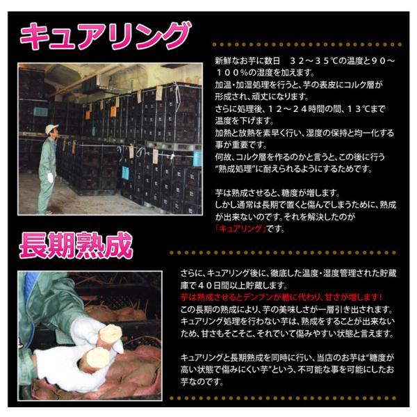 《送料無料》種子島産 「安納紅芋」 訳あり小玉 約1.5kg×3箱 合計4.5kg 安納芋 〇|tsukijiichiba|04