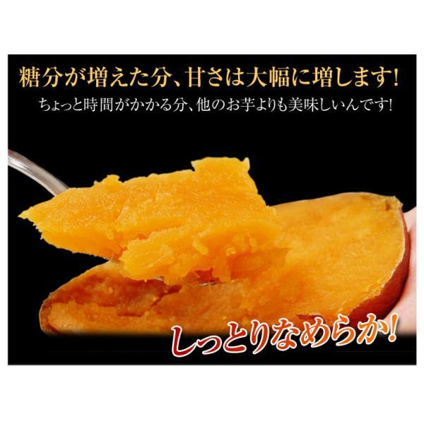 《送料無料》種子島産 「安納紅芋」 訳あり小玉 約1.5kg×3箱 合計4.5kg 安納芋 〇|tsukijiichiba|05