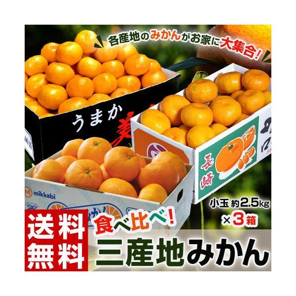 みかん ミカン 三産地の早生みかん食べ比べ 小玉 約2.5kg×3箱 合計約7.5kg (佐賀県・長崎県・和歌山県) 送料無料|tsukijiichiba