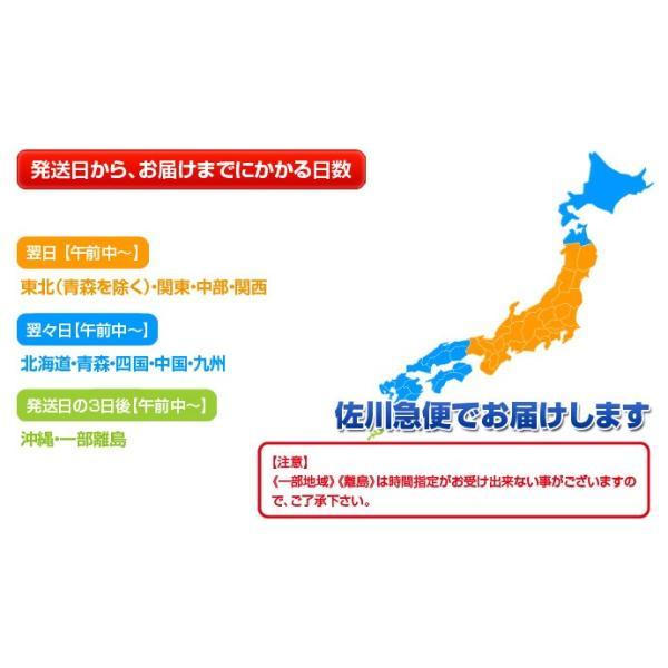 福袋 棚卸 倉庫開放ご奉仕セット えび エビ 海老餃子 大粒28個+2品 冷凍 送料無料 tsukijiichiba 11