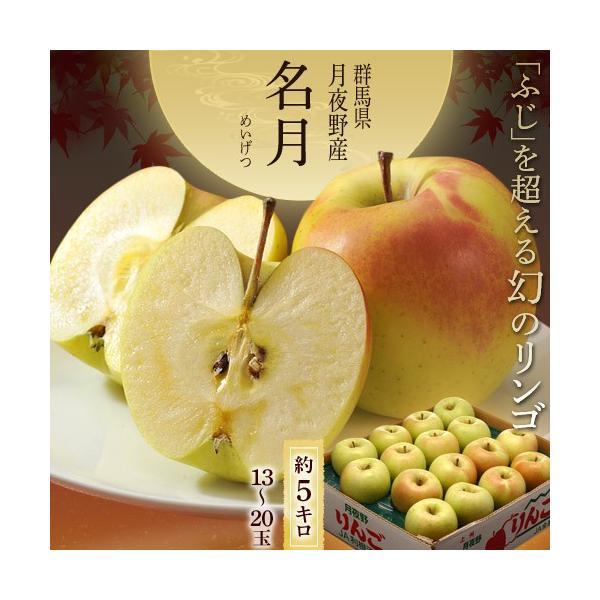 りんご リンゴ 群馬 月夜野産 ぐんま名月 秀品 14〜23玉 約5kg|tsukijiichiba