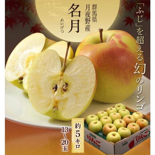 りんご リンゴ 群馬 月夜野産 ぐんま名月 秀品 14〜23玉 約5kg|tsukijiichiba|02