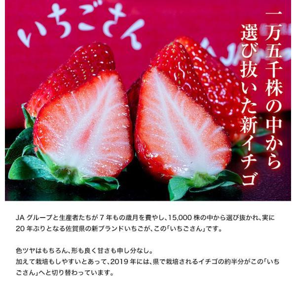 佐賀県産 「いちごさん」 1箱:約240g(8〜12粒)×2パック|tsukijiichiba|02