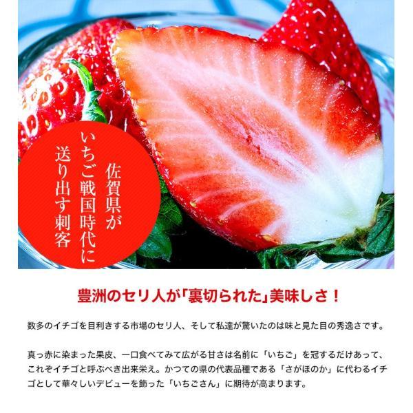 佐賀県産 「いちごさん」 1箱:約240g(8〜12粒)×2パック|tsukijiichiba|03