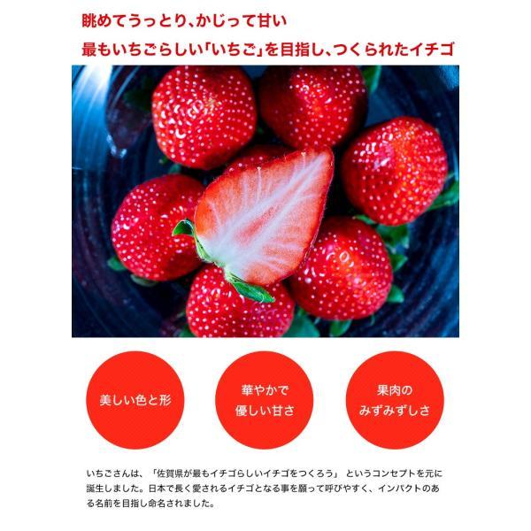 佐賀県産 「いちごさん」 1箱:約240g(8〜12粒)×2パック|tsukijiichiba|04