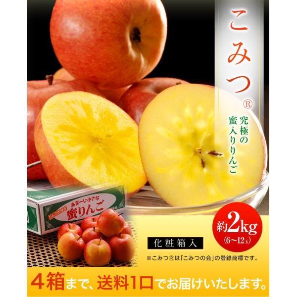 こみつ りんご リンゴ 究極の蜜入りりんご 青森県産 こみつ 6〜12玉 約2キロ ※4箱まで同一配送先に限り送料1口|tsukijiichiba|02