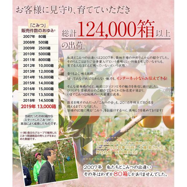 こみつ りんご リンゴ 究極の蜜入りりんご 青森県産 こみつ 6〜12玉 約2キロ ※4箱まで同一配送先に限り送料1口|tsukijiichiba|11