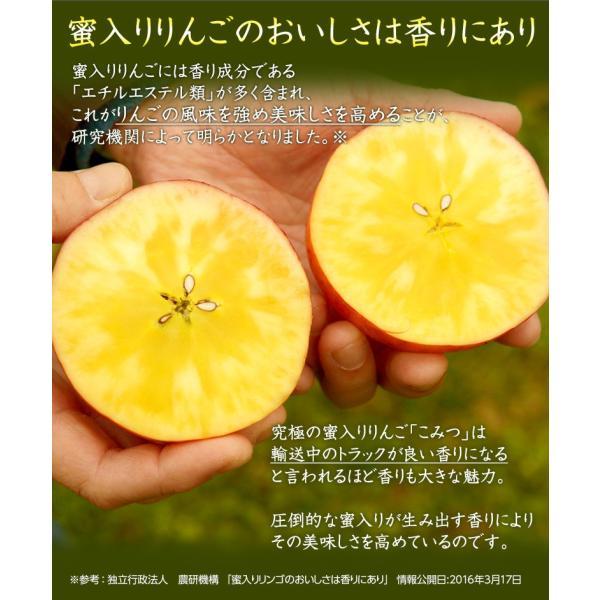 こみつ りんご リンゴ 究極の蜜入りりんご 青森県産 こみつ 6〜12玉 約2キロ ※4箱まで同一配送先に限り送料1口|tsukijiichiba|04