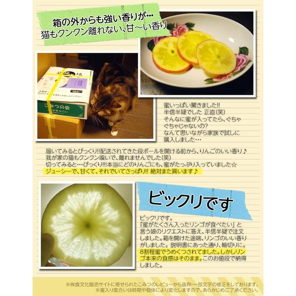 こみつ りんご リンゴ 究極の蜜入りりんご 青森県産 こみつ 6〜12玉 約2キロ ※4箱まで同一配送先に限り送料1口|tsukijiichiba|06