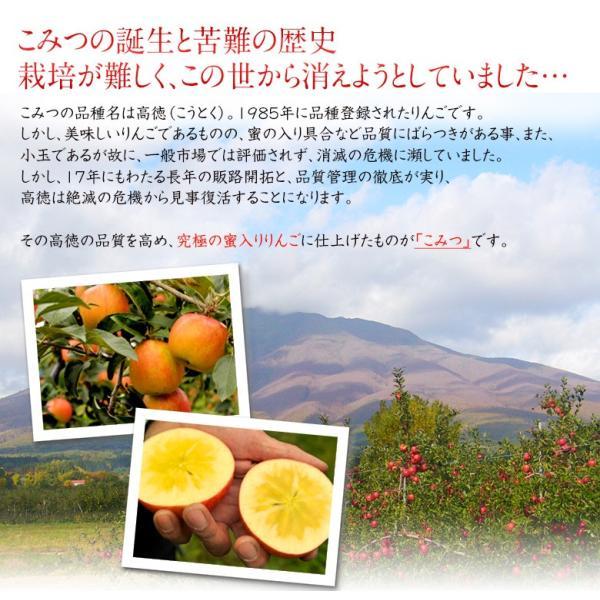 こみつ りんご リンゴ 究極の蜜入りりんご 青森県産 こみつ 6〜12玉 約2キロ ※4箱まで同一配送先に限り送料1口|tsukijiichiba|08